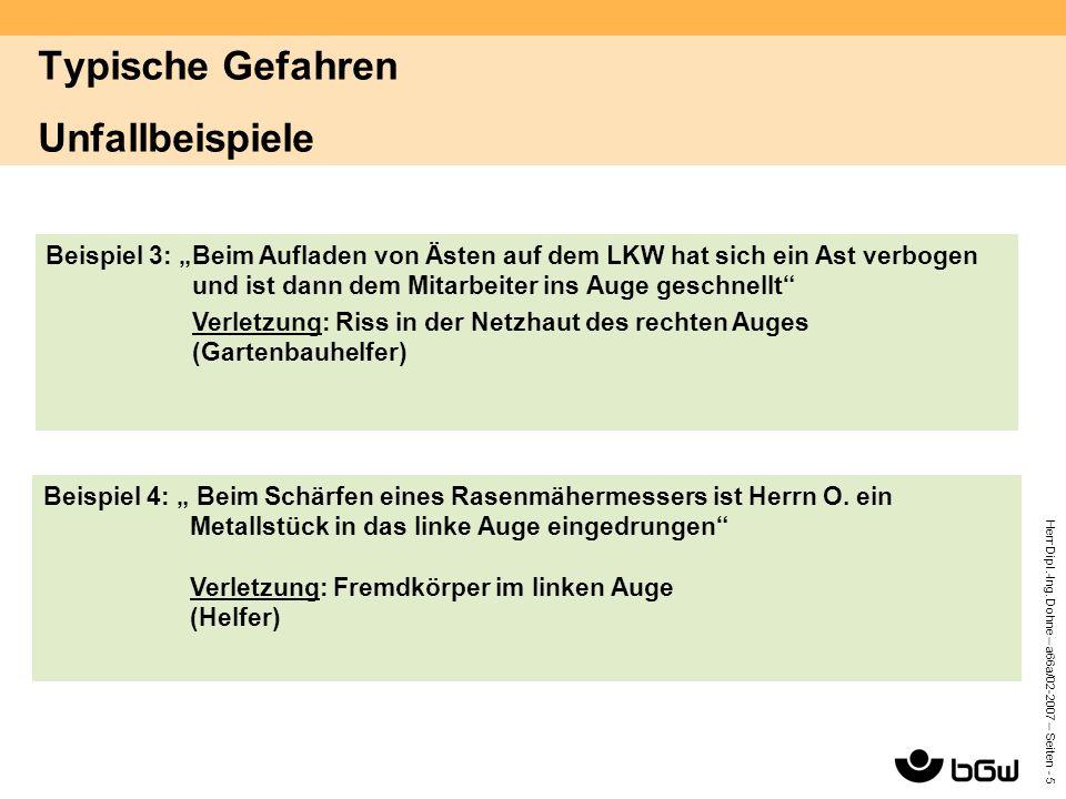 """Herr Dipl.-Ing. Dohne – a66a/02-2007 – Seiten - 5 Beispiel 3: """"Beim Aufladen von Ästen auf dem LKW hat sich ein Ast verbogen und ist dann dem Mitarbei"""