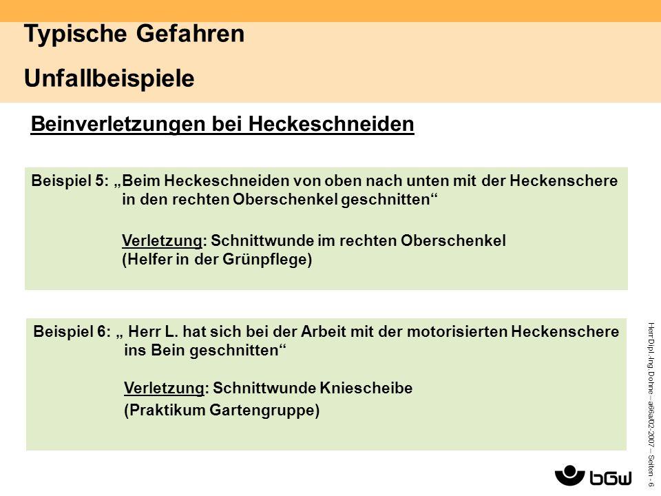 """Herr Dipl.-Ing. Dohne – a66a/02-2007 – Seiten - 6 Beinverletzungen bei Heckeschneiden Beispiel 5: """"Beim Heckeschneiden von oben nach unten mit der Hec"""
