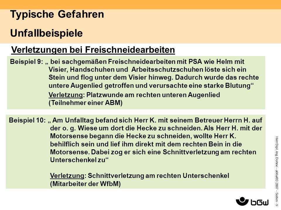 """Herr Dipl.-Ing. Dohne – a66a/02-2007 – Seiten - 9 Verletzungen bei Freischneidearbeiten Beispiel 9: """" bei sachgemäßen Freischneidearbeiten mit PSA wie"""