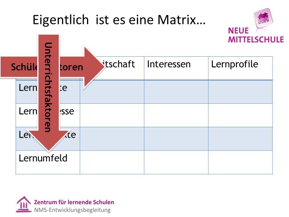 Eigentlich ist es eine Matrix… BereitschaftInteressenLernprofile Lerninhalte Lernprozesse Lernprodukte Lernumfeld Schülerfaktoren Unterrichtsfaktoren