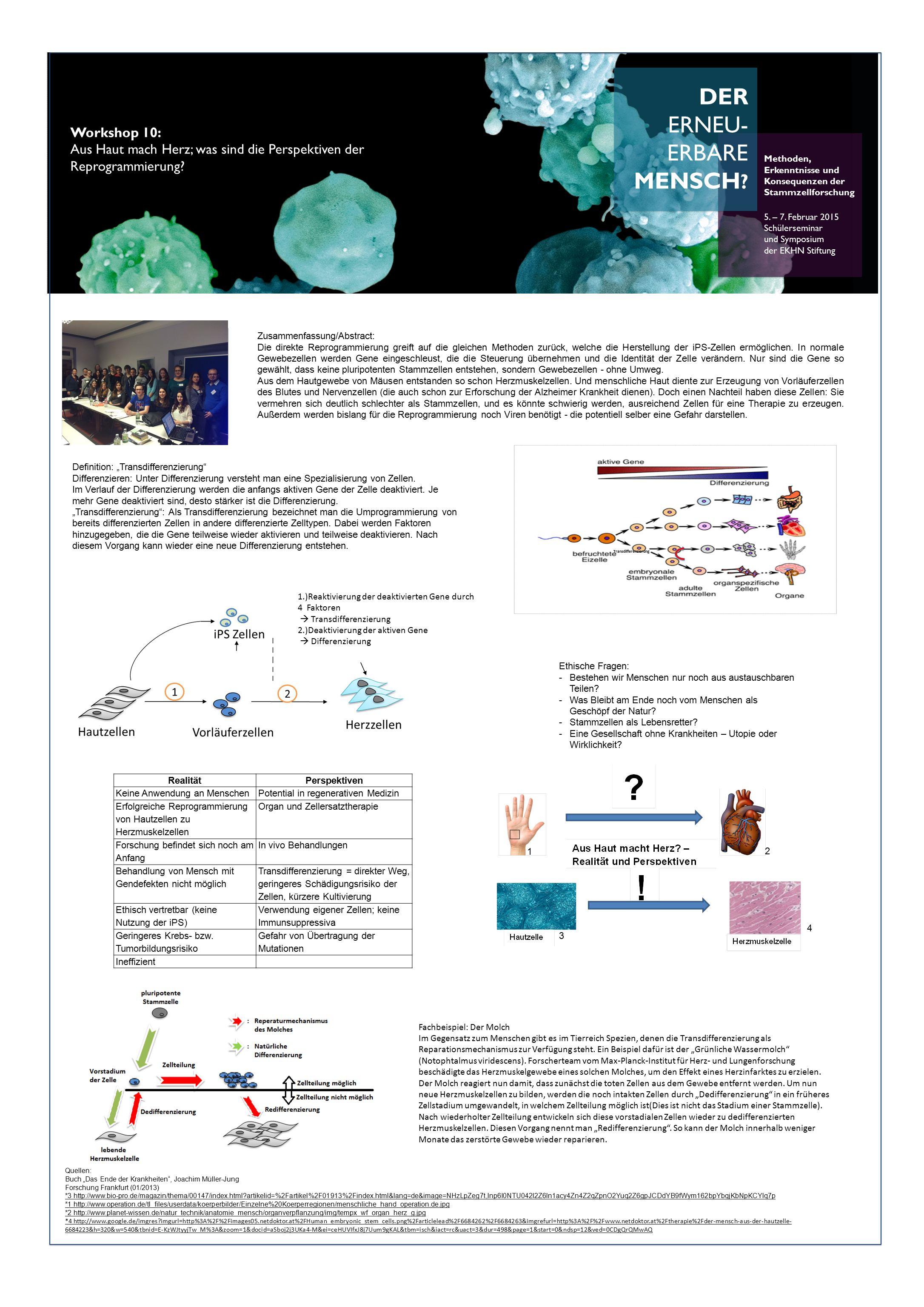 DER ERNEU- ERBARE MENSCH .Methoden, Erkenntnisse und Konsequenzen der Stammzellforschung 5.