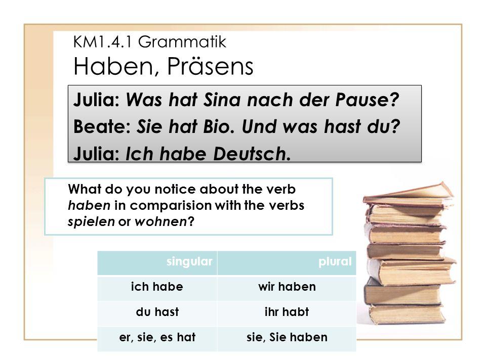 KM1.4.1 Grammatik Haben, Präsens Julia: Was hat Sina nach der Pause.