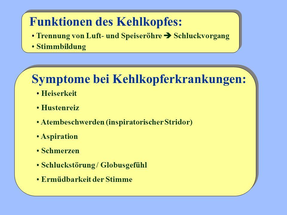 Symptome bei Kehlkopferkrankungen: Funktionen des Kehlkopfes: Trennung von Luft- und Speiseröhre  Schluckvorgang Stimmbildung Heiserkeit Hustenreiz A
