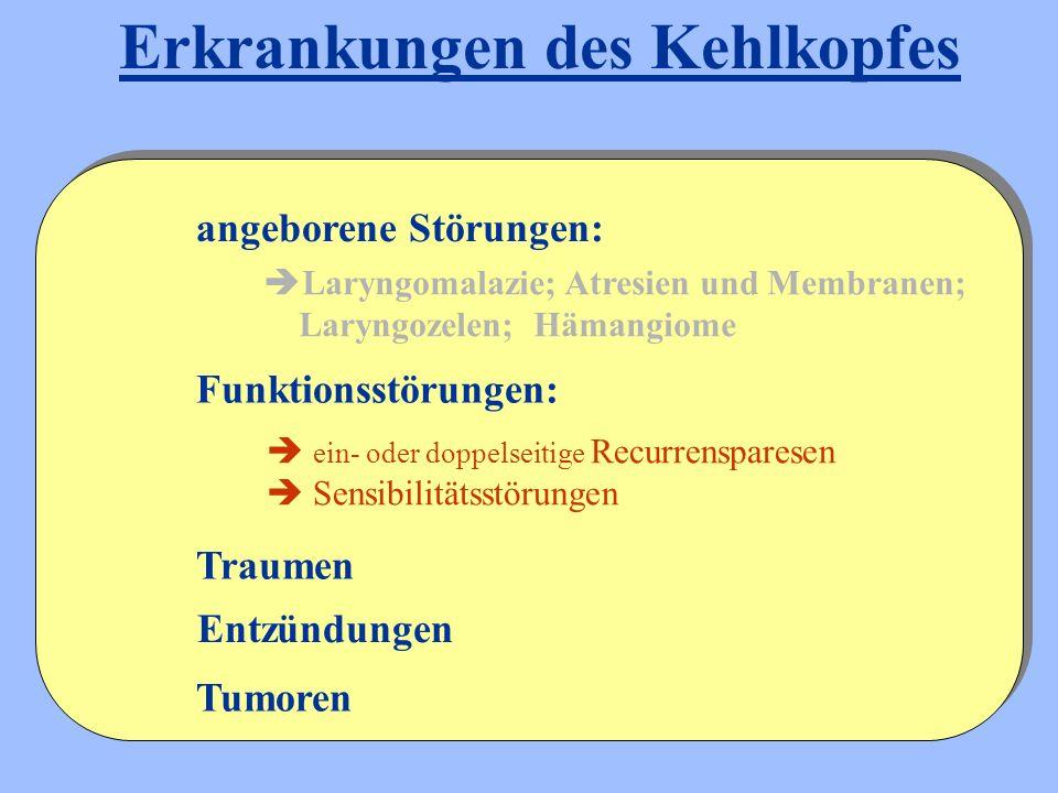 Laryngomalazie; Atresien und Membranen; Laryngozelen; Hämangiome Entzündungen angeborene Störungen: Funktionsstörungen: Traumen Tumoren Erkrankungen des Kehlkopfes  ein- oder doppelseitige Recurrensparesen  Sensibilitätsstörungen