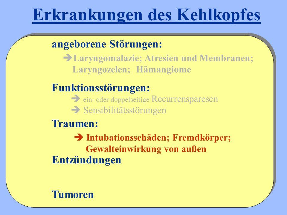  Laryngomalazie; Atresien und Membranen; Laryngozelen; Hämangiome Entzündungen angeborene Störungen: Funktionsstörungen: Traumen:  ein- oder doppels