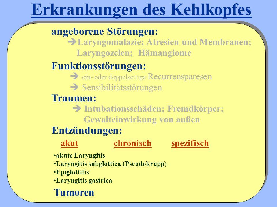 Erkrankungen des Kehlkopfes  Laryngomalazie; Atresien und Membranen; Laryngozelen; Hämangiome Entzündungen: angeborene Störungen: Funktionsstörungen: Traumen:  ein- oder doppelseitige Recurrensparesen  Sensibilitätsstörungen  Intubationsschäden; Fremdkörper; Gewalteinwirkung von außen Tumoren akutchronischspezifisch akute Laryngitis Laryngitis subglottica (Pseudokrupp) Epiglottitis Laryngitis gastrica