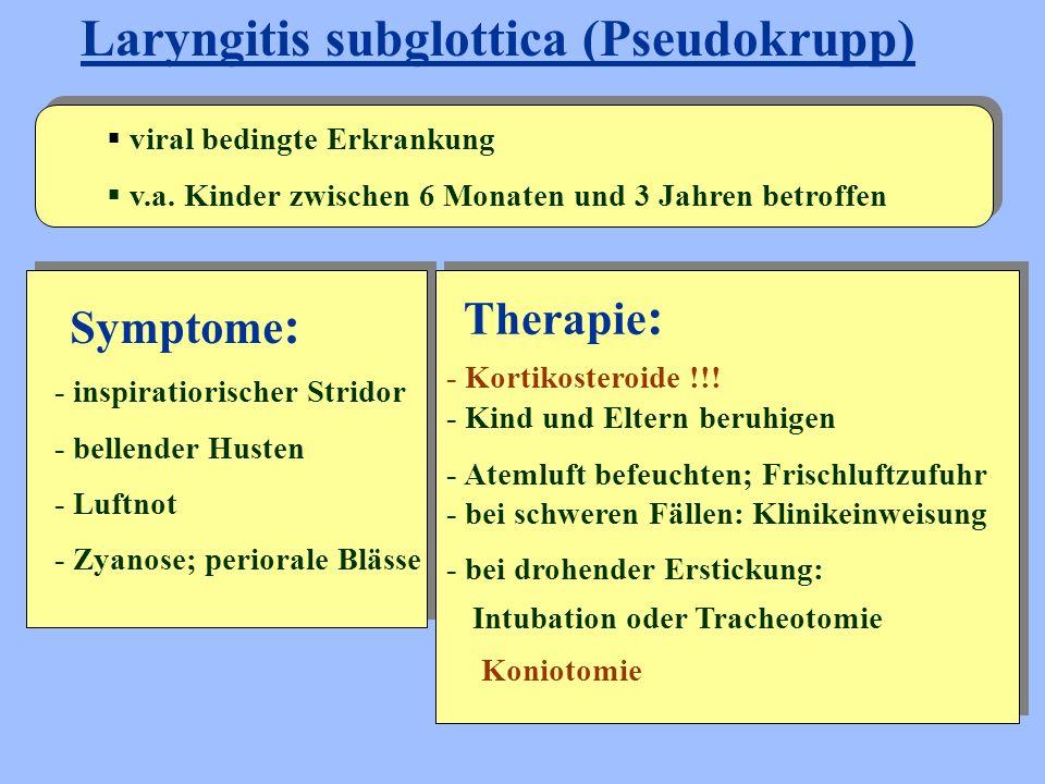 Symptome : Laryngitis subglottica (Pseudokrupp)  viral bedingte Erkrankung  v.a. Kinder zwischen 6 Monaten und 3 Jahren betroffen - inspiratiorische
