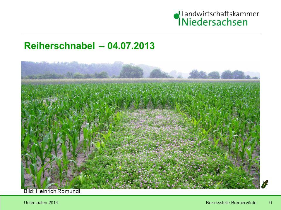 Untersaaten 2014Bezirksstelle Bremervörde 6 Reiherschnabel – 04.07.2013 Bild: Heinrich Romundt