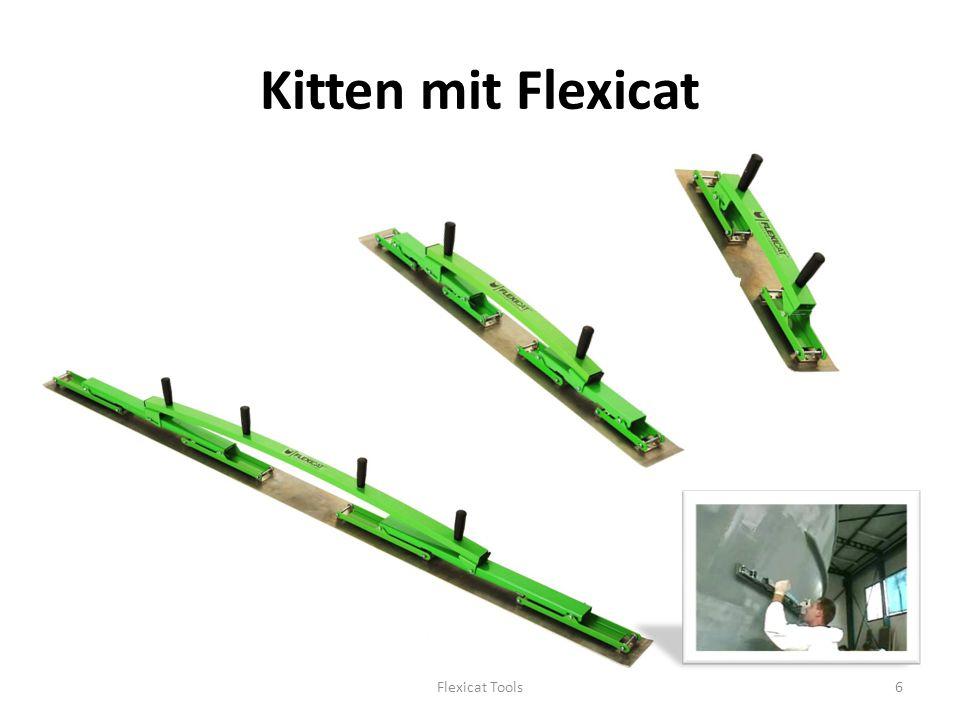 Kitten mit Flexicat Flexicat Tools6