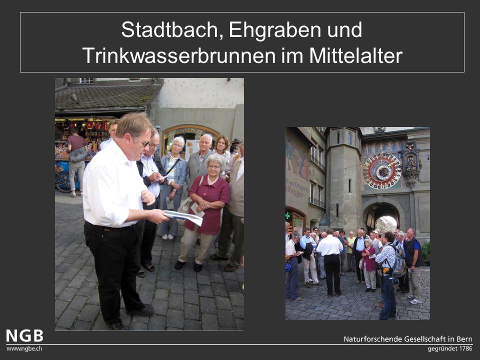 Stadtbach, Ehgraben und Trinkwasserbrunnen im Mittelalter