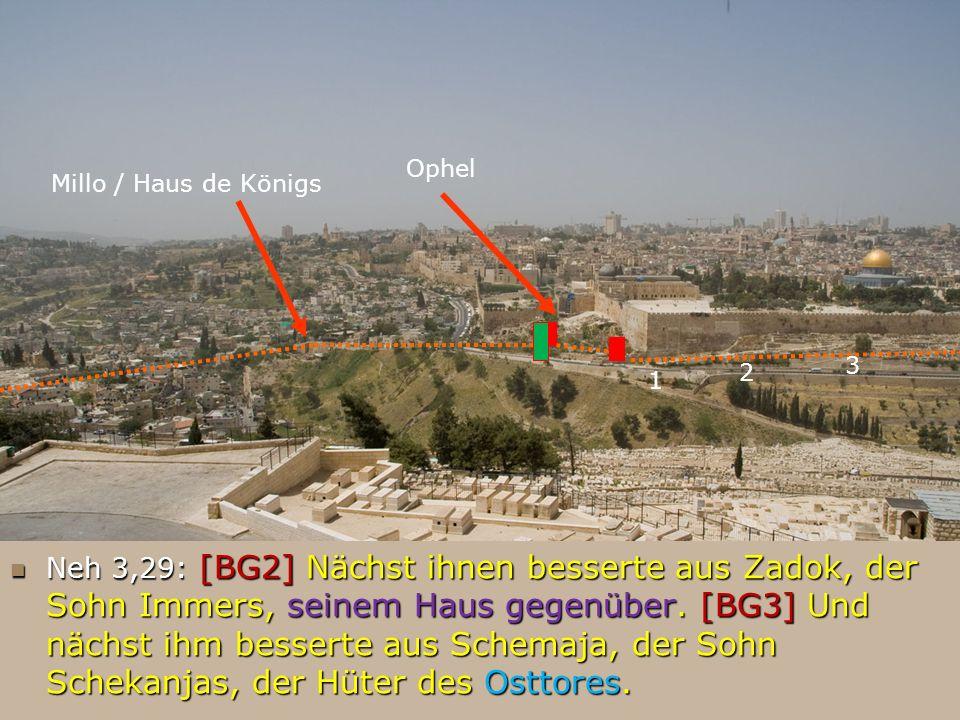 Ophel Millo / Haus de Königs 1 Neh 3,29: [BG2] Nächst ihnen besserte aus Zadok, der Sohn Immers, seinem Haus gegenüber. [BG3] Und nächst ihm besserte