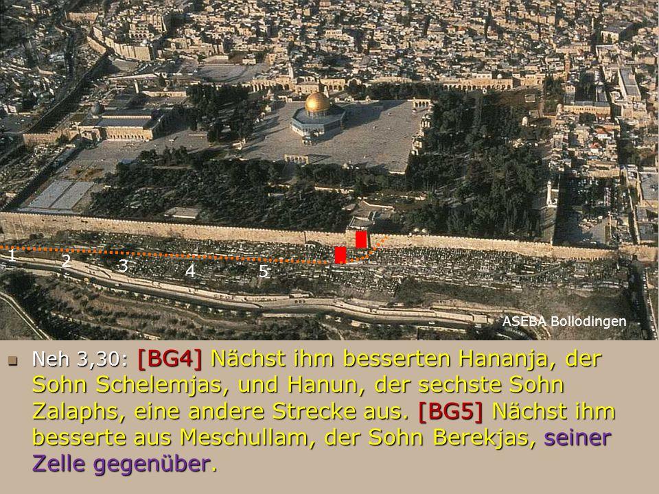 FB Neh 3,30: [BG4] Nächst ihm besserten Hananja, der Sohn Schelemjas, und Hanun, der sechste Sohn Zalaphs, eine andere Strecke aus. [BG5] Nächst ihm b