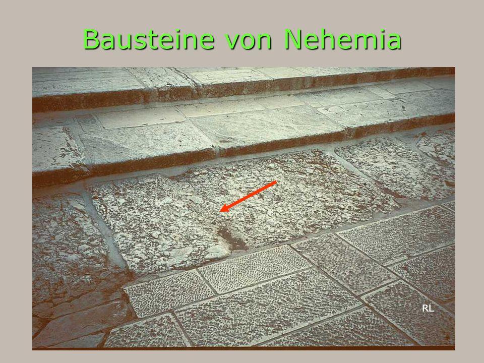 Bausteine von Nehemia RL