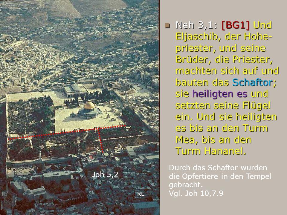 Neh 3,1: [BG1] Und Eljaschib, der Hohe- priester, und seine Brüder, die Priester, machten sich auf und bauten das Schaftor; sie heiligten es und setzt