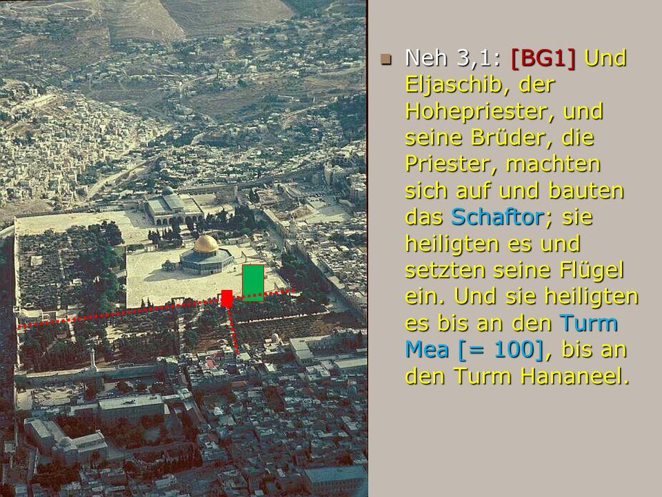 Neh 3,1: [BG1] Und Eljaschib, der Hohepriester, und seine Brüder, die Priester, machten sich auf und bauten das Schaftor; sie heiligten es und setzten