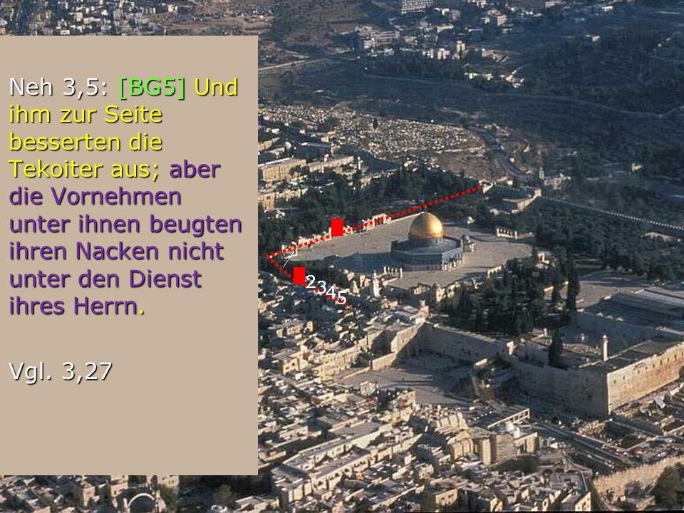 Neh 3,5: [BG5] Und ihm zur Seite besserten die Tekoiter aus; aber die Vornehmen unter ihnen beugten ihren Nacken nicht unter den Dienst ihres Herrn. N
