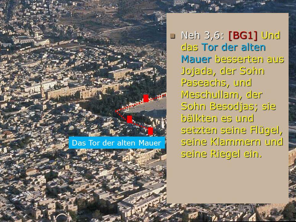 Neh 3,6: [BG1] Und das Tor der alten Mauer besserten aus Jojada, der Sohn Paseachs, und Meschullam, der Sohn Besodjas; sie bälkten es und setzten sein