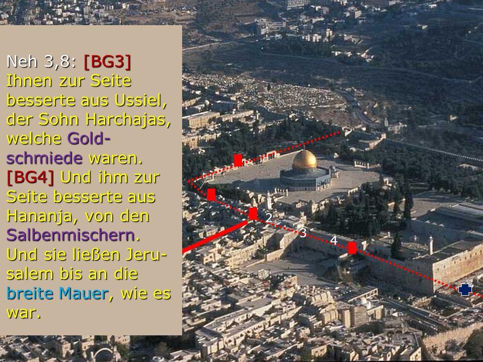 2 Neh 3,8: [BG3] Ihnen zur Seite besserte aus Ussiel, der Sohn Harchajas, welche Gold- schmiede waren. [BG4] Und ihm zur Seite besserte aus Hananja, v