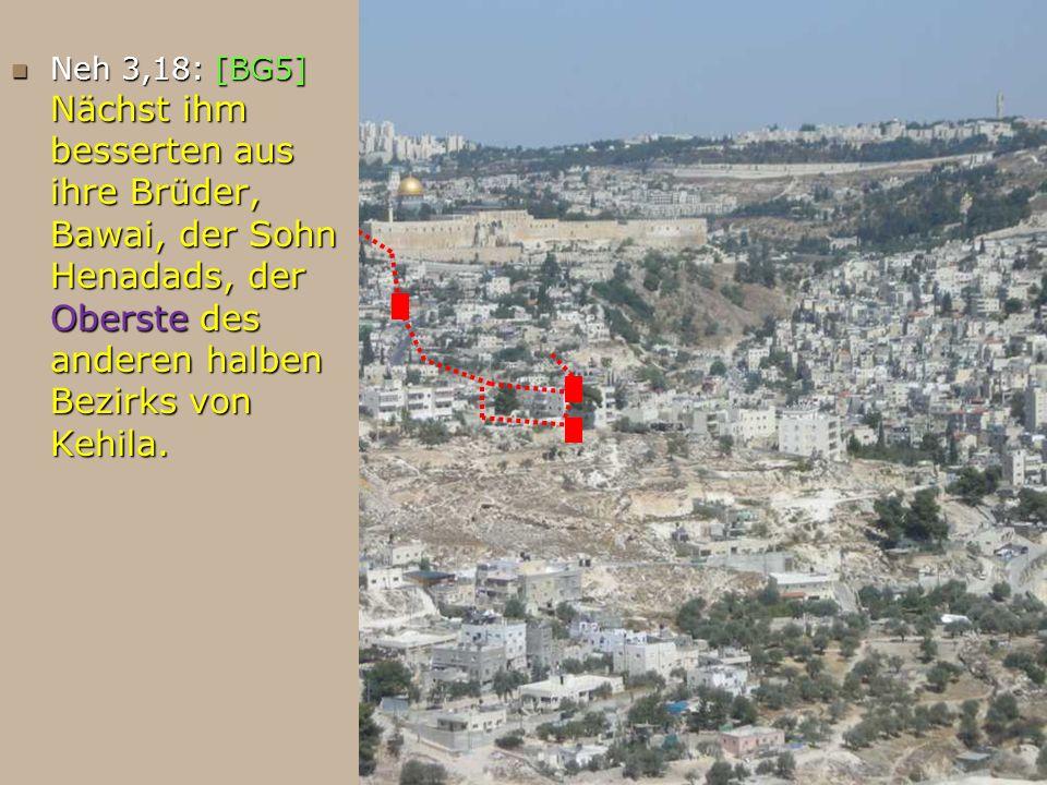 Neh 3,18: [BG5] Nächst ihm besserten aus ihre Brüder, Bawai, der Sohn Henadads, der Oberste des anderen halben Bezirks von Kehila. Neh 3,18: [BG5] Näc