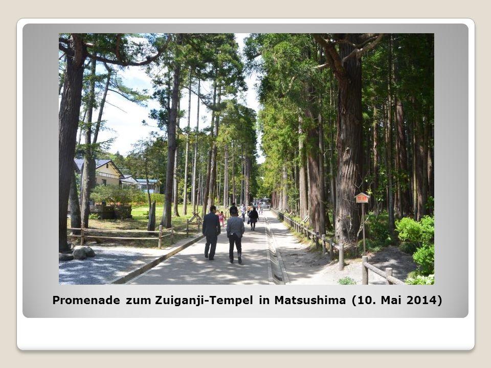 Promenade zum Zuiganji-Tempel in Matsushima (10. Mai 2014)
