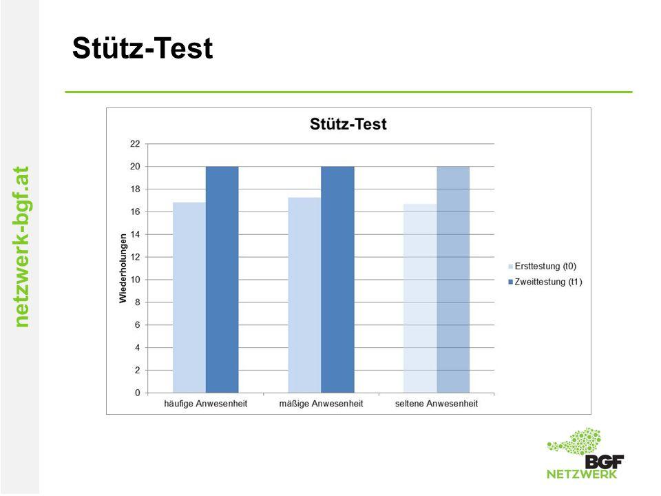 netzwerk-bgf.at Stütz-Test