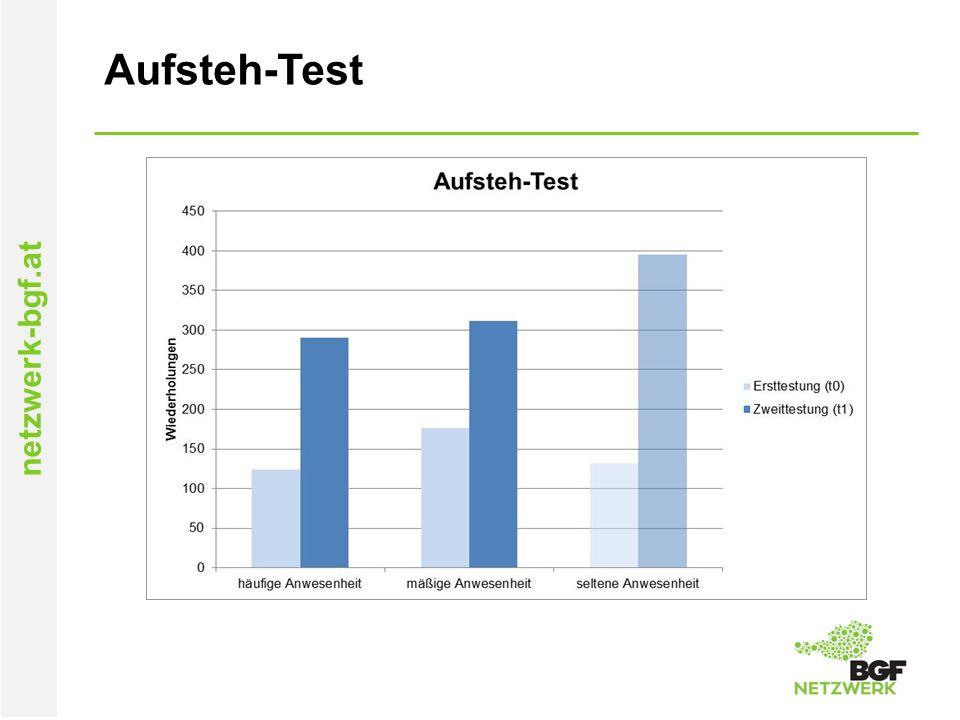 netzwerk-bgf.at Aufsteh-Test