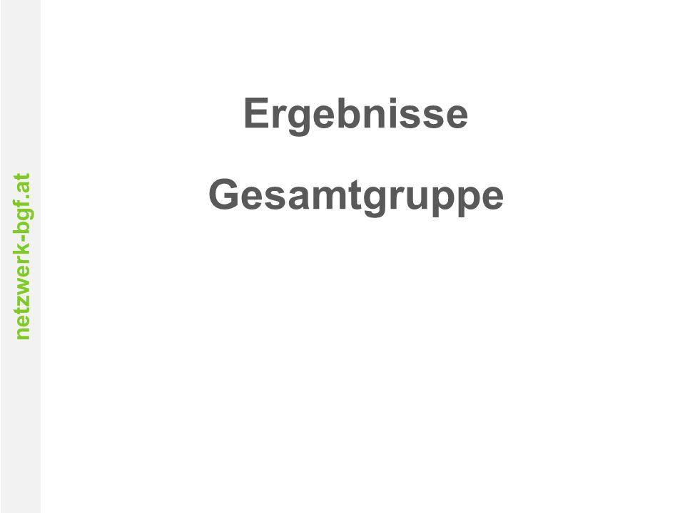 netzwerk-bgf.at Ergebnisse Gesamtgruppe