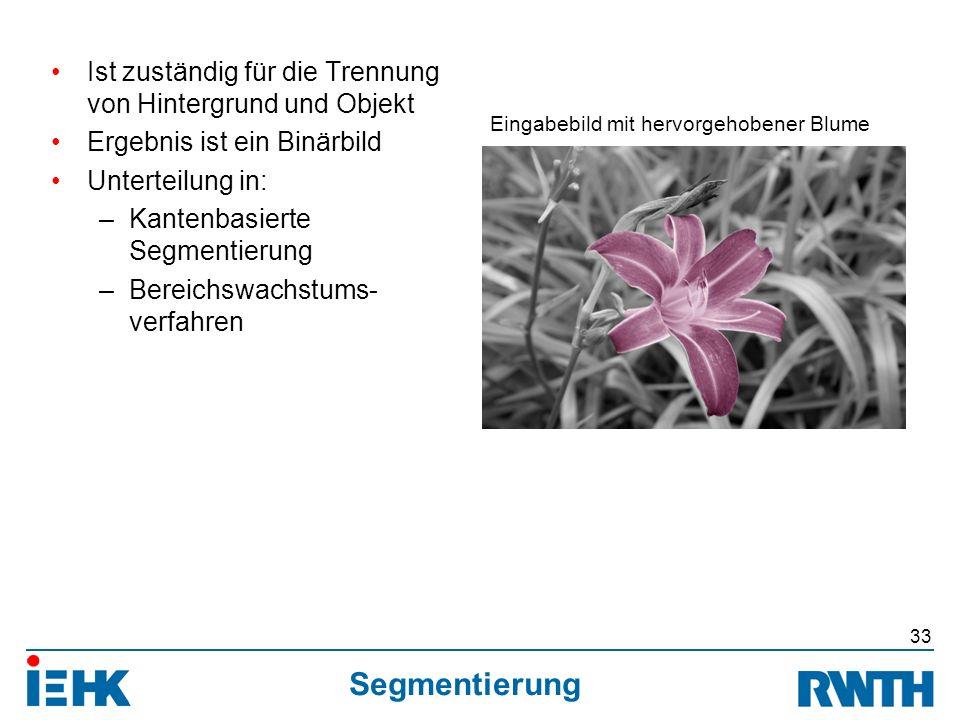 Segmentierung Ist zuständig für die Trennung von Hintergrund und Objekt Ergebnis ist ein Binärbild Unterteilung in: –Kantenbasierte Segmentierung –Bereichswachstums- verfahren 33 Eingabebild mit hervorgehobener Blume