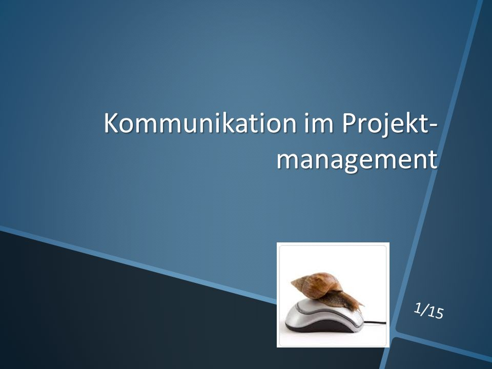 Kommunikation im Projekt- management 1/15