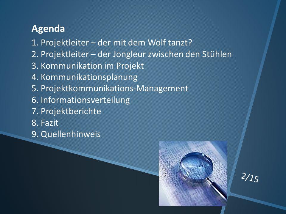 2/15 Agenda 1. Projektleiter – der mit dem Wolf tanzt.