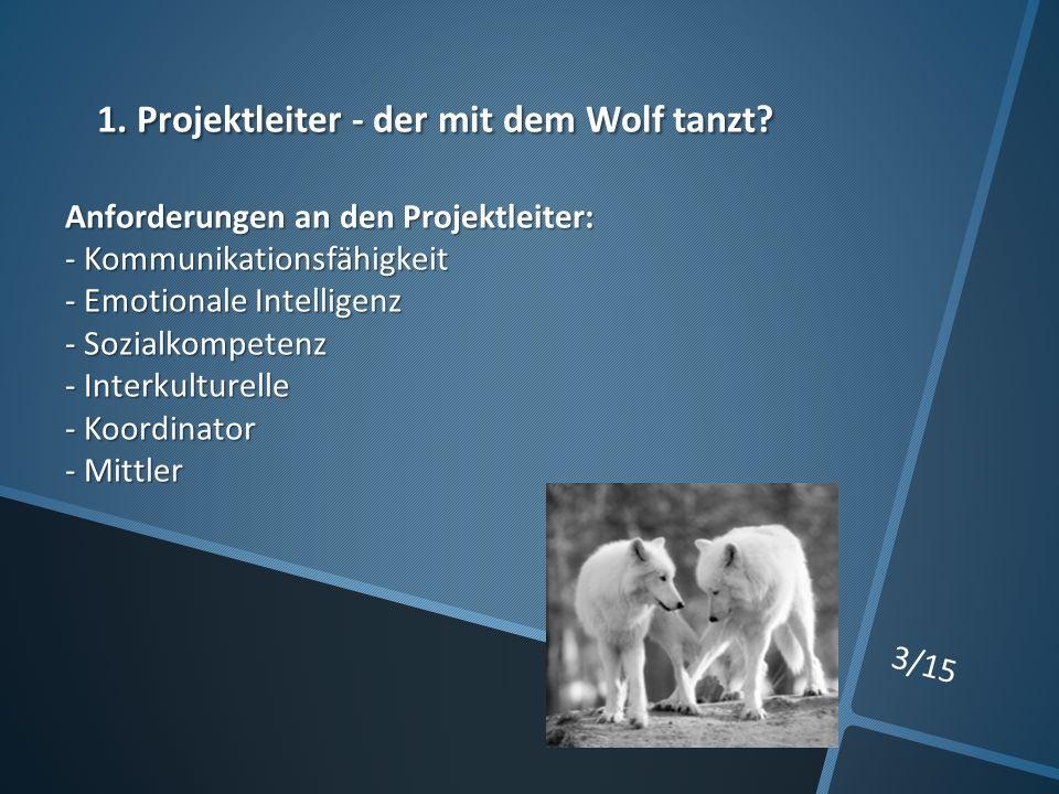 3/15 1. Projektleiter - der mit dem Wolf tanzt.