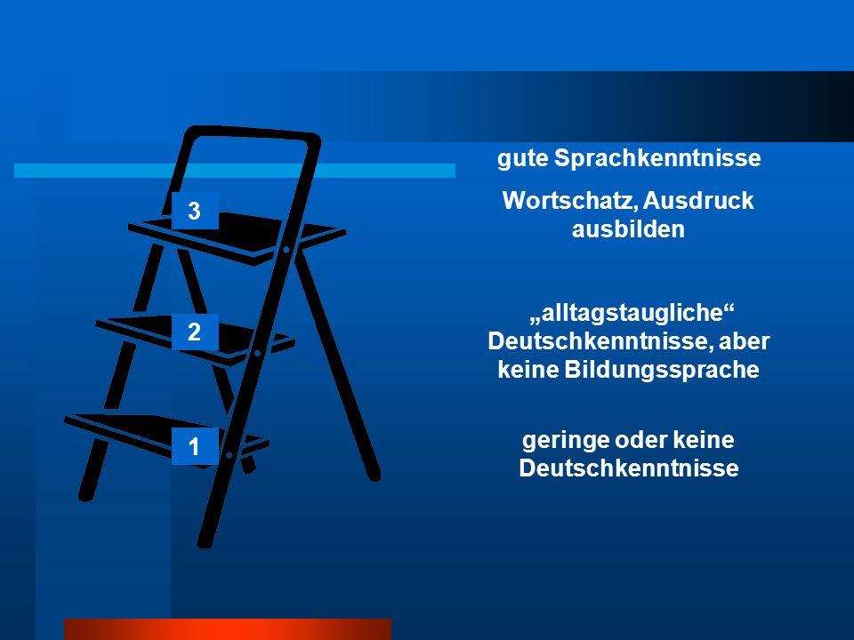 """geringe oder keine Deutschkenntnisse """"alltagstaugliche Deutschkenntnisse, aber keine Bildungssprache gute Sprachkenntnisse Wortschatz, Ausdruck ausbilden 1 2 3"""