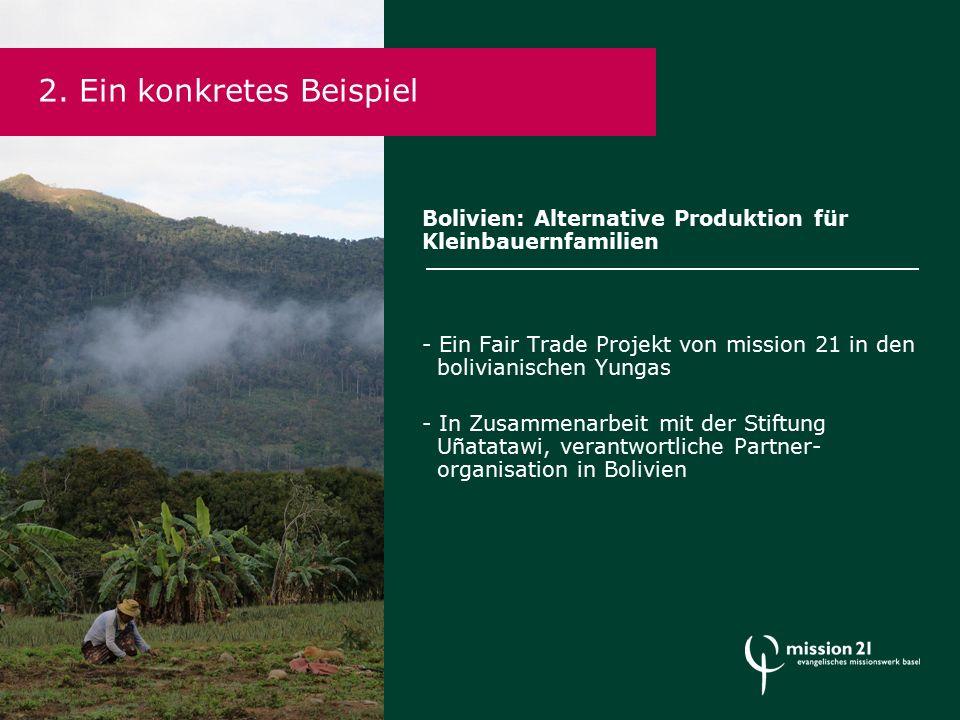 Bolivien: Alternative Produktion für Kleinbauernfamilien - Ein Fair Trade Projekt von mission 21 in den bolivianischen Yungas - In Zusammenarbeit mit der Stiftung Uñatatawi, verantwortliche Partner- organisation in Bolivien 2.