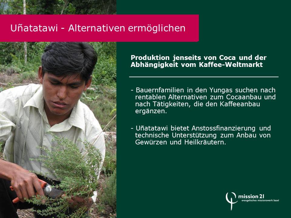 Produktion jenseits von Coca und der Abhängigkeit vom Kaffee-Weltmarkt - Bauernfamilien in den Yungas suchen nach rentablen Alternativen zum Cocaanbau und nach Tätigkeiten, die den Kaffeeanbau ergänzen.
