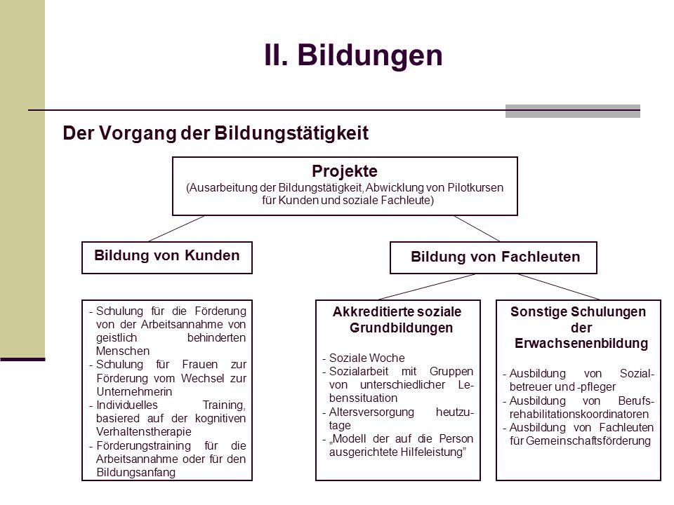 II. Bildungen Der Vorgang der Bildungstätigkeit Projekte (Ausarbeitung der Bildungstätigkeit, Abwicklung von Pilotkursen für Kunden und soziale Fachle