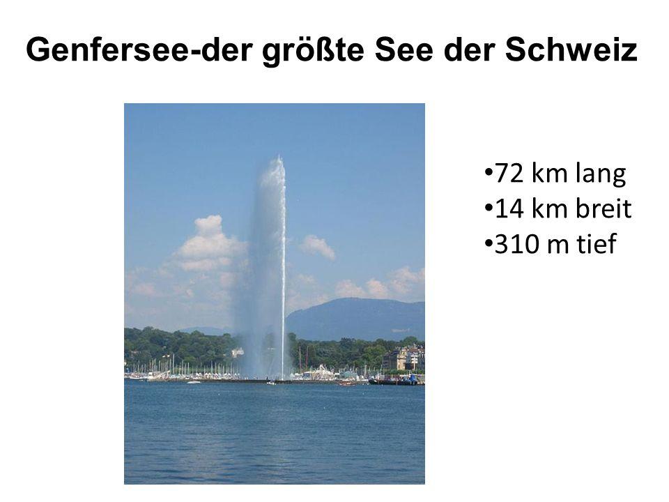 Genfersee-der größte See der Schweiz 72 km lang 14 km breit 310 m tief
