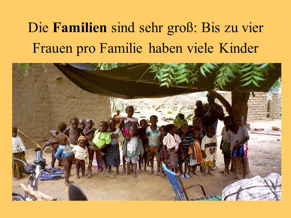 Die Familien sind sehr groß: Bis zu vier Frauen pro Familie haben viele Kinder