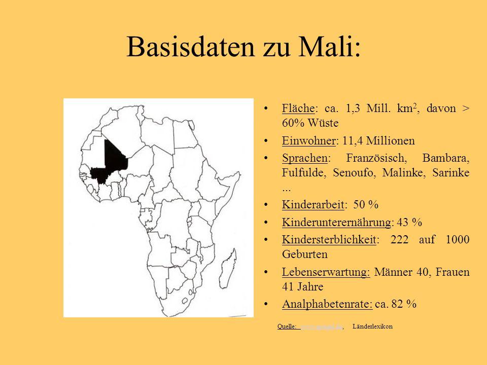 Basisdaten zu Mali: Fläche: ca. 1,3 Mill.