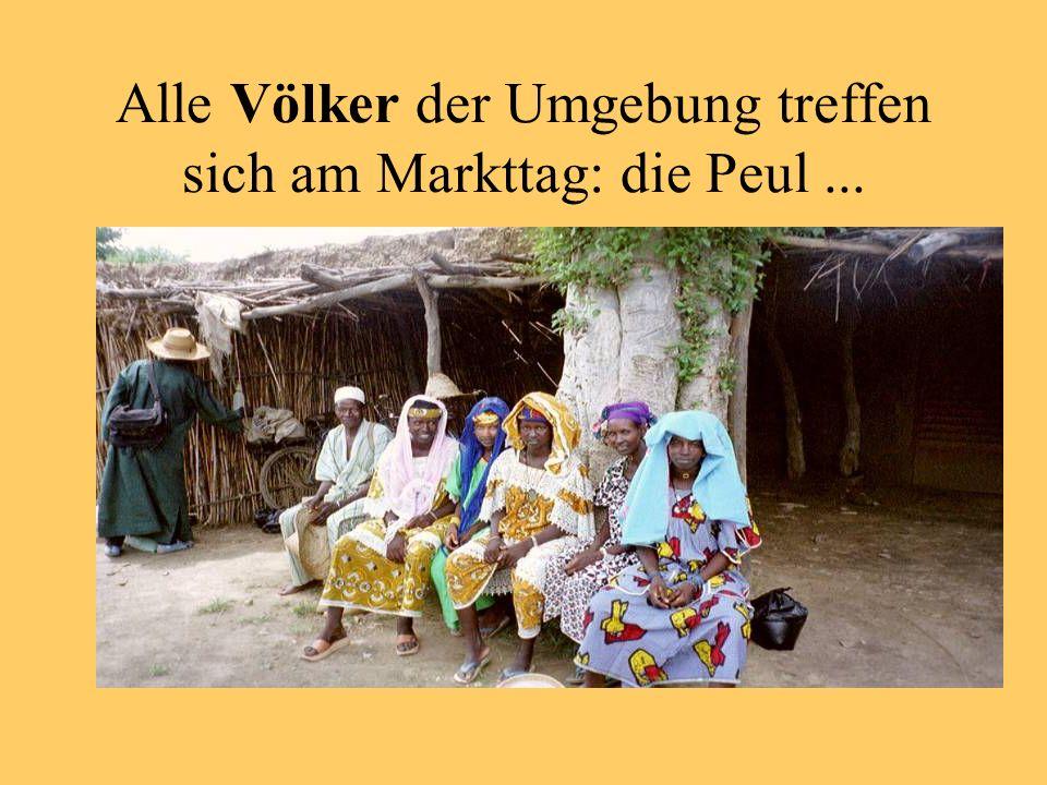 Alle Völker der Umgebung treffen sich am Markttag: die Peul...