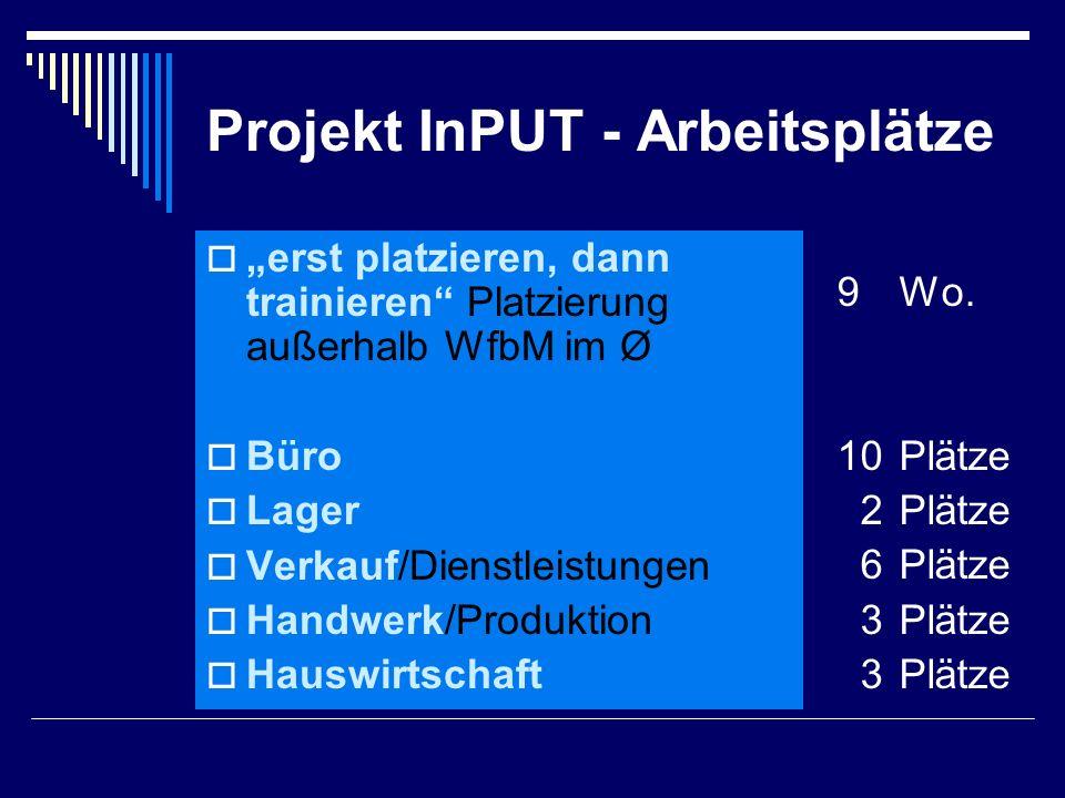 """Projekt InPUT - Arbeitsplätze  """"erst platzieren, dann trainieren Platzierung außerhalb WfbM im Ø  Büro  Lager  Verkauf/Dienstleistungen  Handwerk/Produktion  Hauswirtschaft 9Wo."""