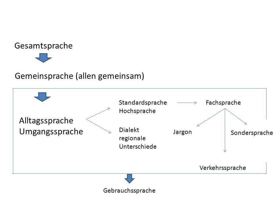 Standardsprache Hochsprache Dialekt regionale Unterschiede Fachsprache Jargon Verkehrssprache Sondersprache Gebrauchssprache Gesamtsprache Gemeinsprache (allen gemeinsam) Alltagssprache Umgangssprache