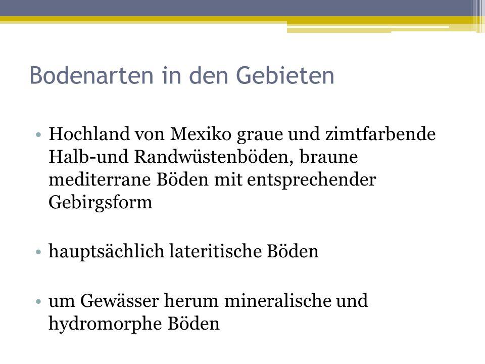 Bodenarten in den Gebieten Hochland von Mexiko graue und zimtfarbende Halb-und Randwüstenböden, braune mediterrane Böden mit entsprechender Gebirgsform hauptsächlich lateritische Böden um Gewässer herum mineralische und hydromorphe Böden