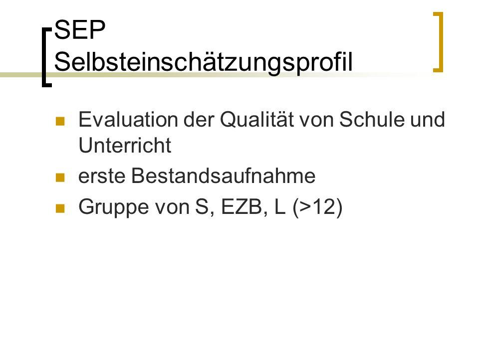SEP Selbsteinschätzungsprofil Evaluation der Qualität von Schule und Unterricht erste Bestandsaufnahme Gruppe von S, EZB, L (>12)