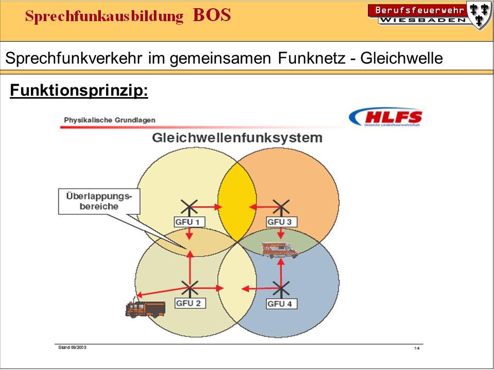 Sprechfunkverkehr im gemeinsamen Funknetz - Gleichwelle Funktionsprinzip: