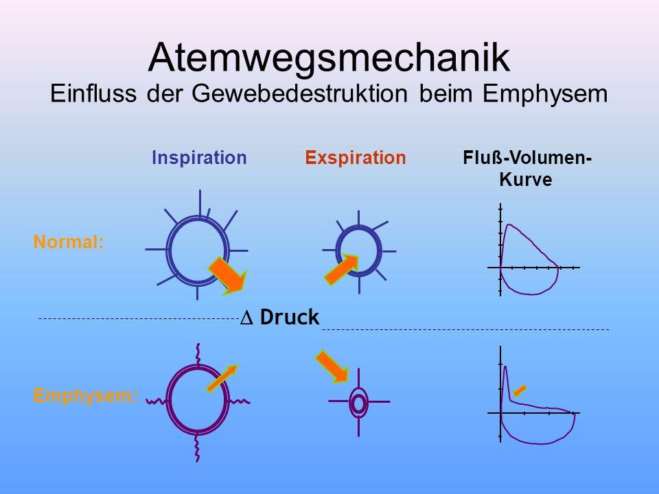 Atemwegsmechanik Einfluss der Gewebedestruktion beim Emphysem Normal: Emphysem: InspirationExspirationFluß-Volumen- Kurve  Druck