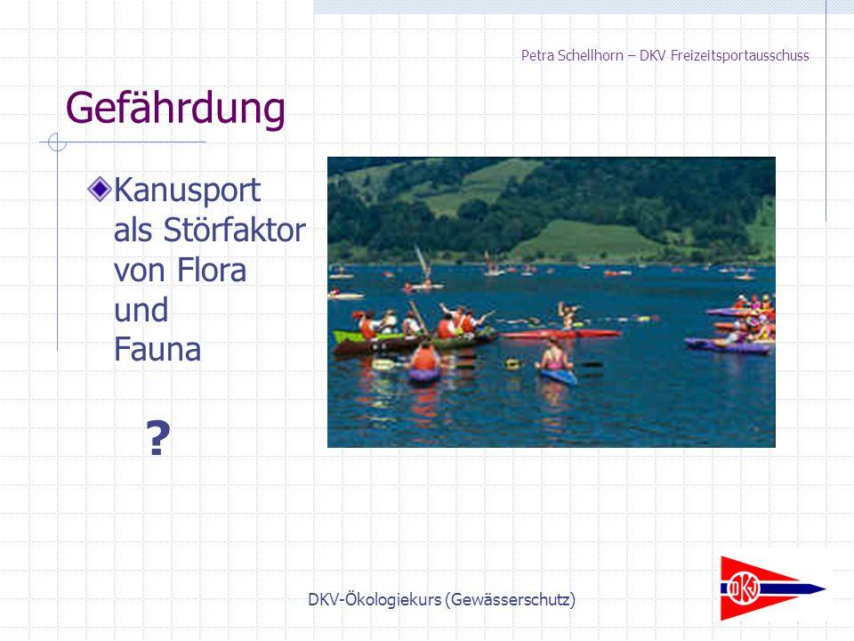 DKV-Ökologiekurs (Gewässerschutz) Petra Schellhorn – DKV Freizeitsportausschuss Kanusport als Störfaktor von Flora und Fauna .