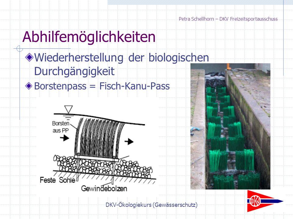 DKV-Ökologiekurs (Gewässerschutz) Petra Schellhorn – DKV Freizeitsportausschuss Wiederherstellung der biologischen Durchgängigkeit Borstenpass = Fisch-Kanu-Pass Abhilfemöglichkeiten