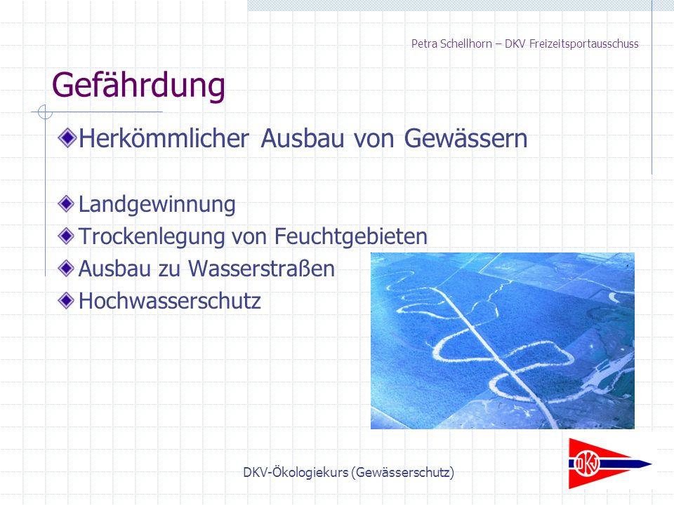 DKV-Ökologiekurs (Gewässerschutz) Petra Schellhorn – DKV Freizeitsportausschuss Herkömmlicher Ausbau von Gewässern Landgewinnung Trockenlegung von Feuchtgebieten Ausbau zu Wasserstraßen Hochwasserschutz Gefährdung