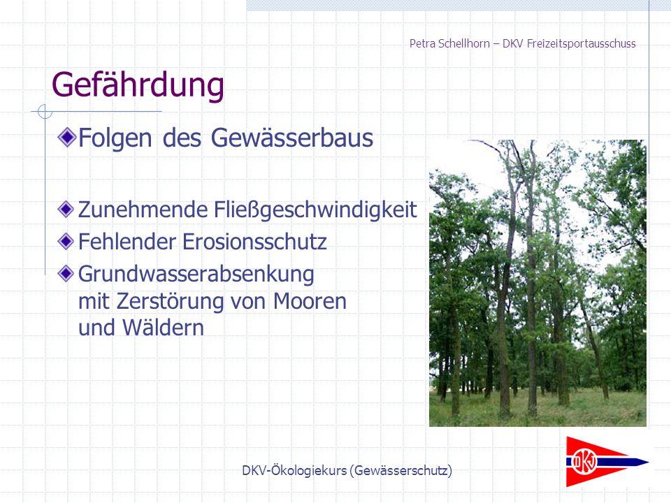 DKV-Ökologiekurs (Gewässerschutz) Petra Schellhorn – DKV Freizeitsportausschuss Folgen des Gewässerbaus Zunehmende Fließgeschwindigkeit Fehlender Erosionsschutz Grundwasserabsenkung mit Zerstörung von Mooren und Wäldern Gefährdung