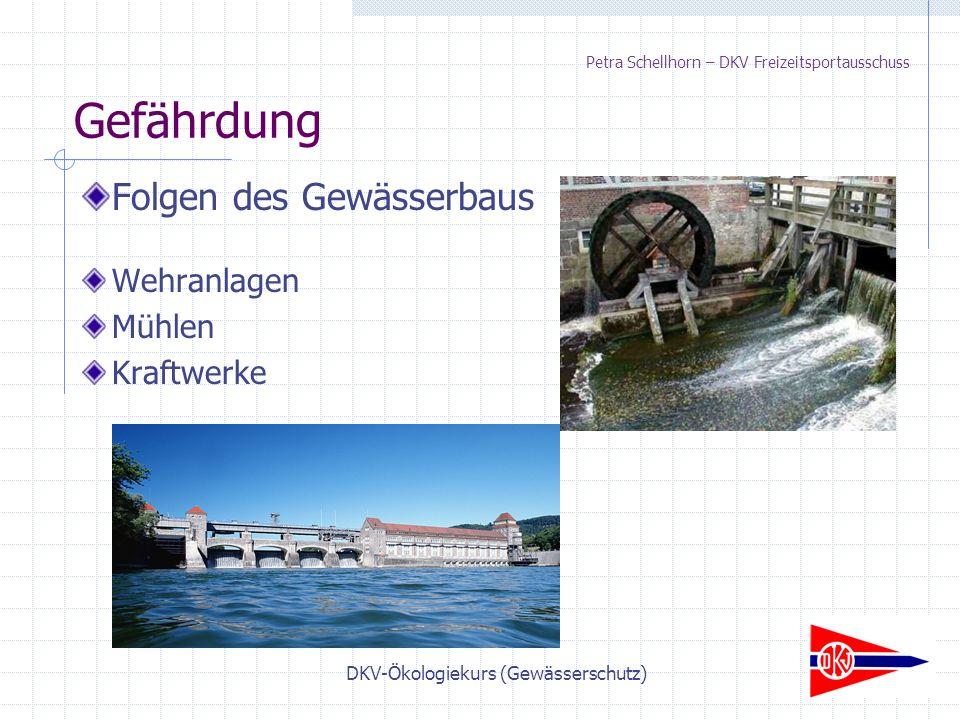 DKV-Ökologiekurs (Gewässerschutz) Petra Schellhorn – DKV Freizeitsportausschuss Folgen des Gewässerbaus Wehranlagen Mühlen Kraftwerke Gefährdung